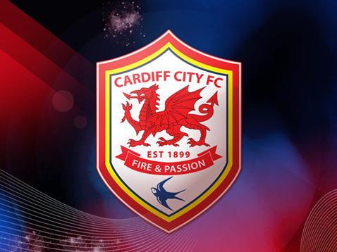 CCFC Crest logo (2013/2013)